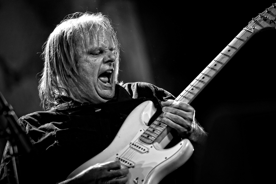 Walter trout rb HIBF